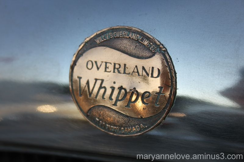 Whippet Antique Car