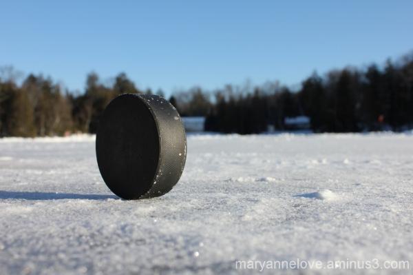 Hockey Puck