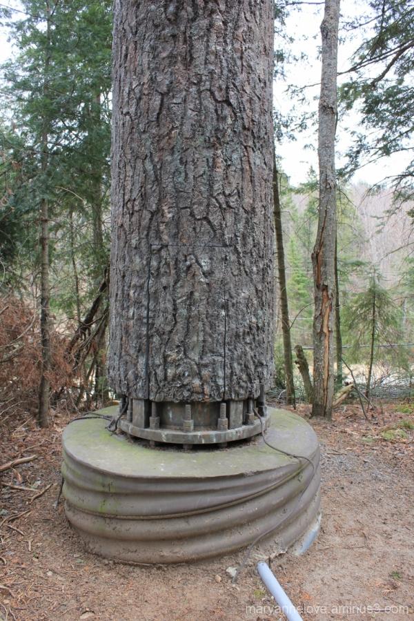 Fake Tree Trunk