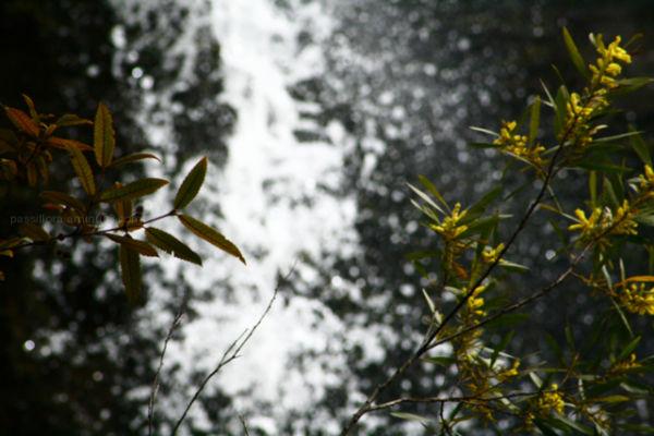 minehaha falls 2