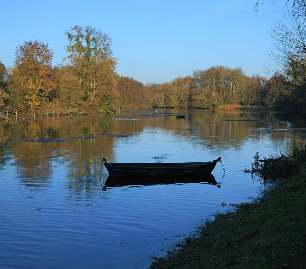 Le Loiret à Olivet I