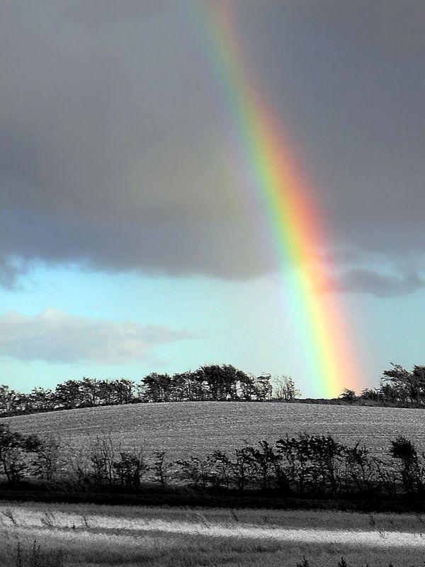 rainbow above a B&W landscape