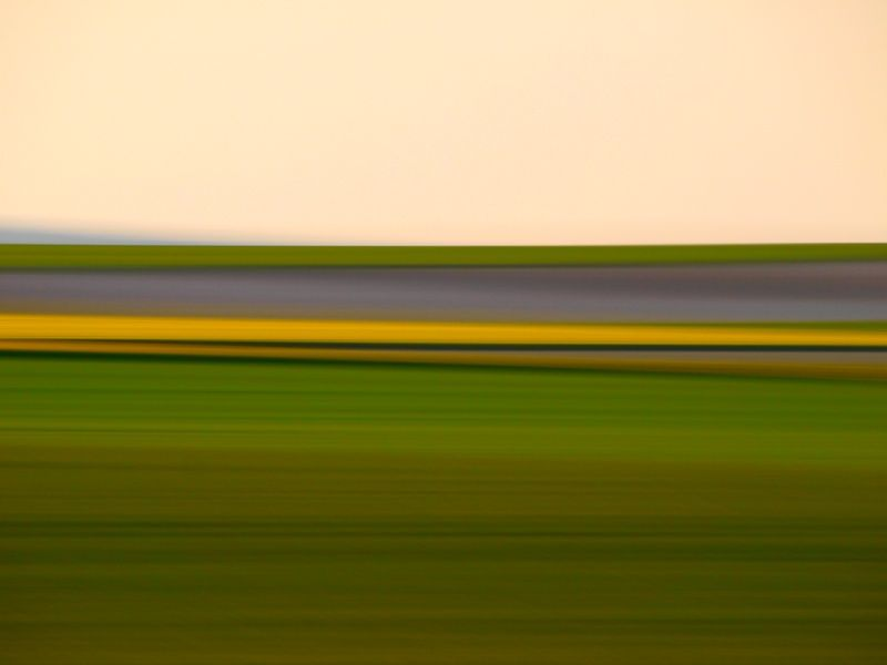 panning on fields