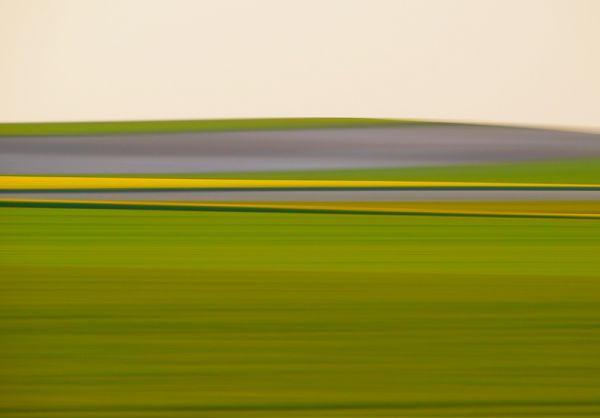 field panning