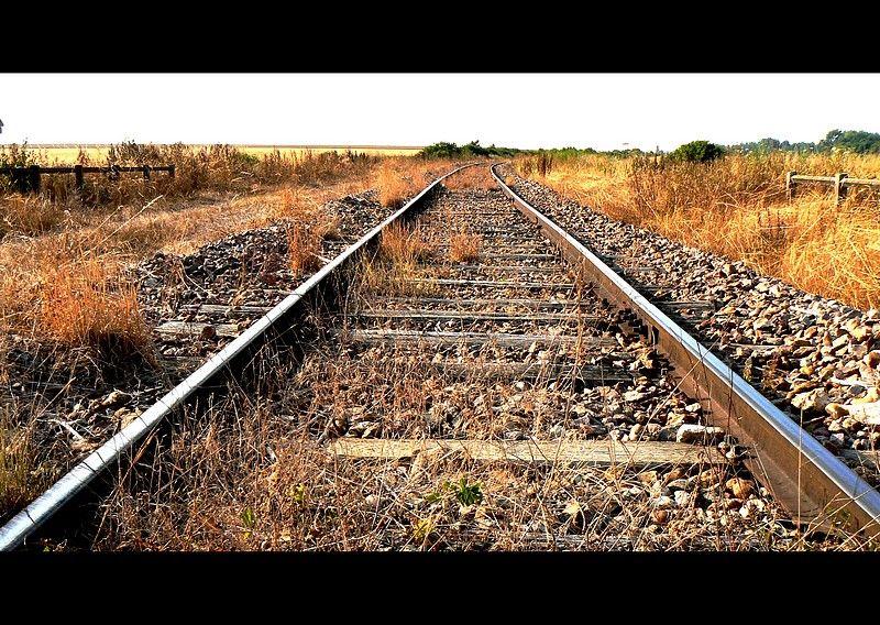 abandonned tracks