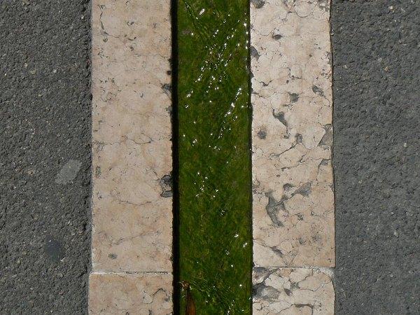 line on ground