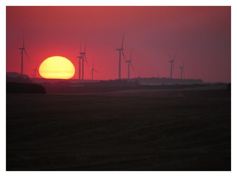 fin de journée chez les éoliennes 11