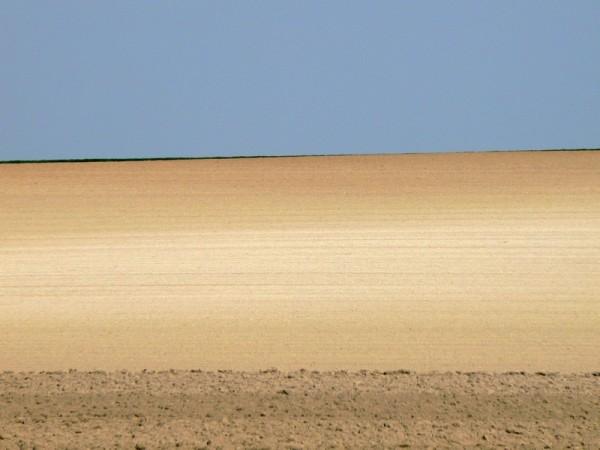 clean horizon line