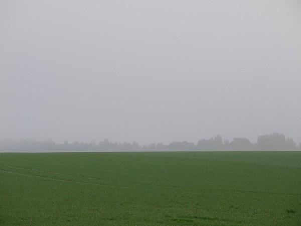on the misty way 5
