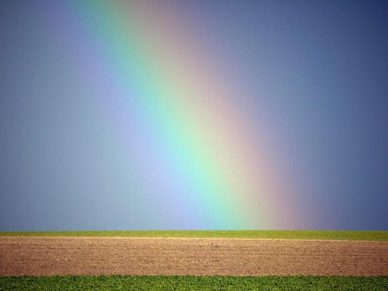 some field over the rainbow