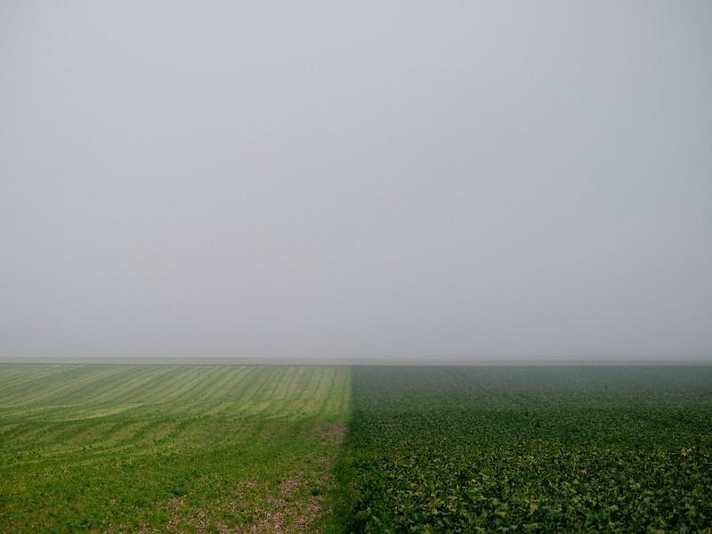 foggy desertic place
