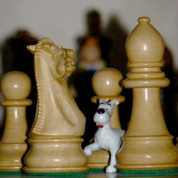 Tintin solving enigma thanks to Milou