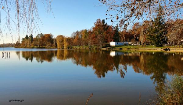 Au bord du Lac ...