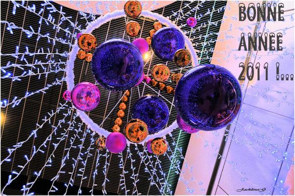 Meilleurs voeux pour 2011 !....