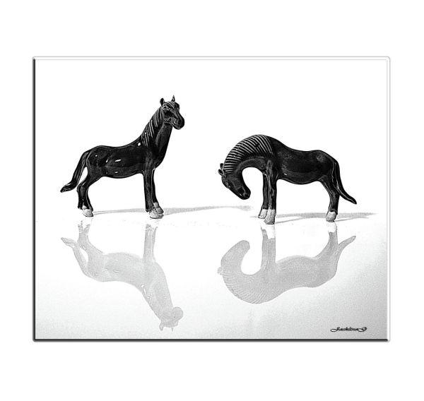Les chevaux ...
