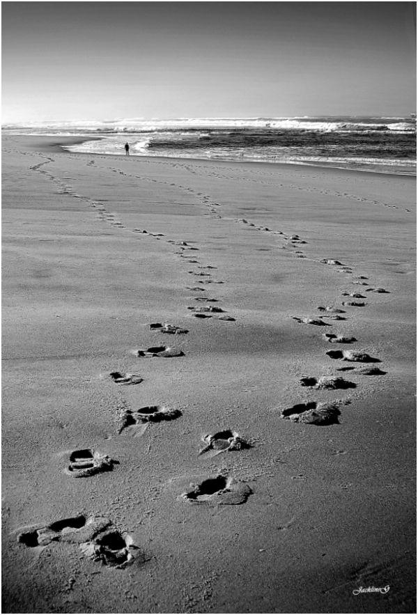 Suivre les traces ...