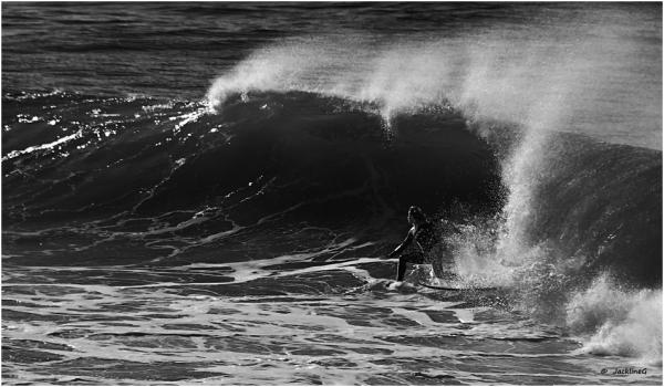 Le surfeur...