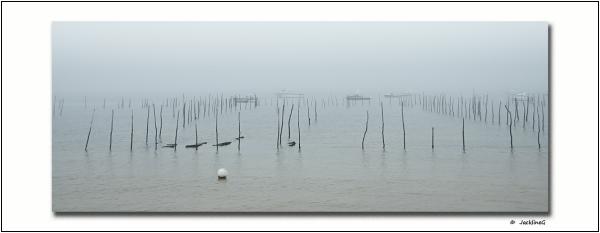 Brouillard sur le Bassin...