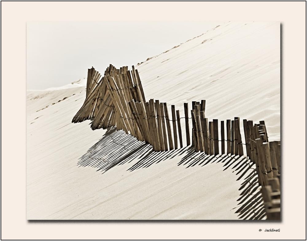 Retenir la Dune ...