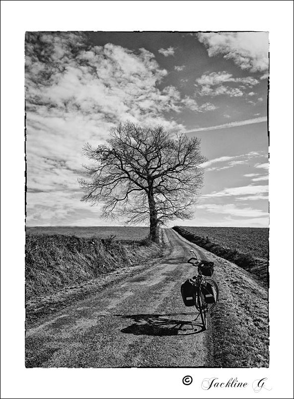 La petite route de campagne ...