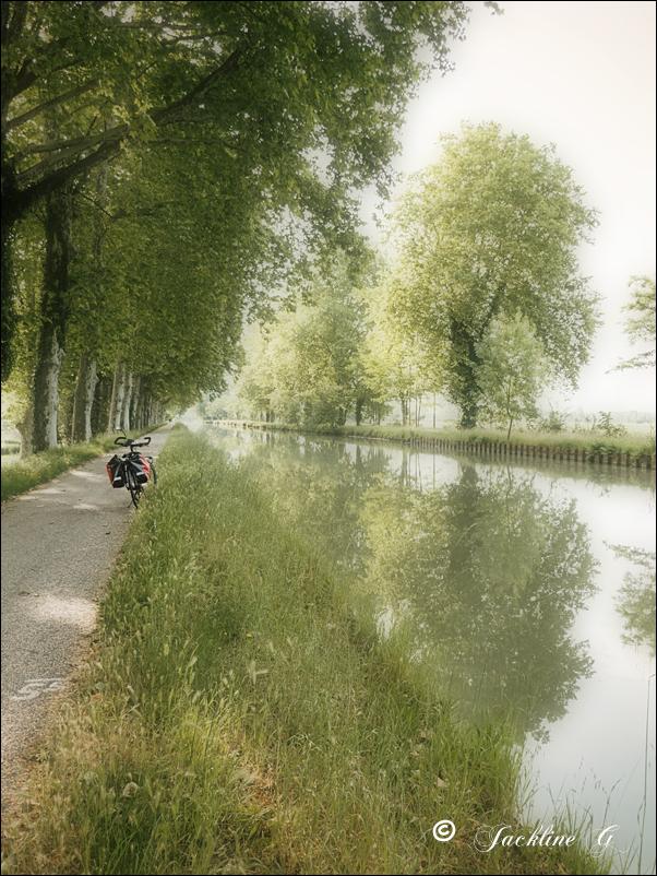 Au bord du canal ...