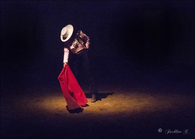 La danseuse ...