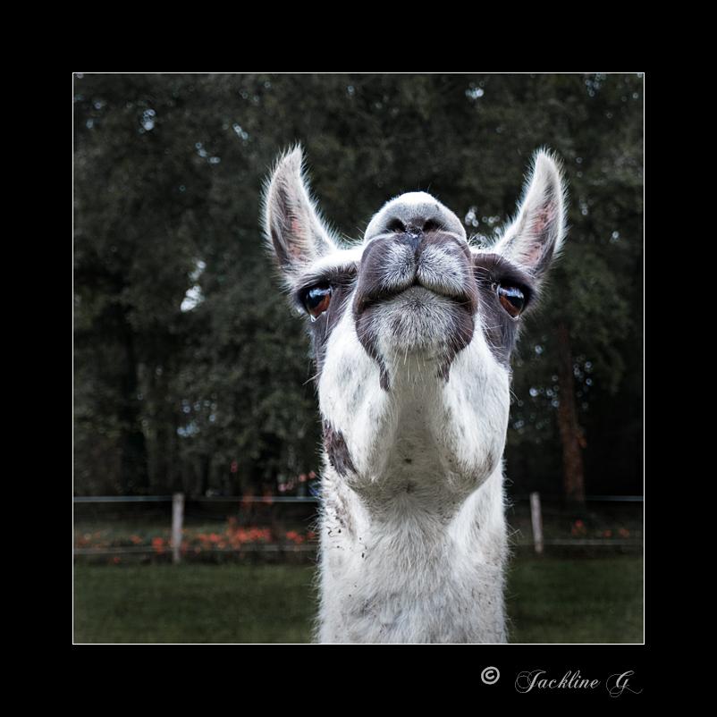 Me revoilà !  .... sourire ... ;-)