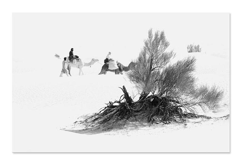 Dans la tempête de sable...