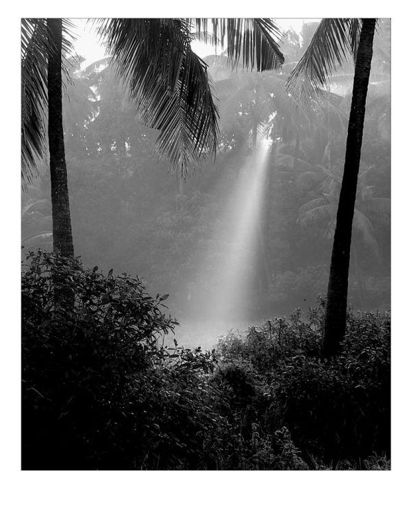 Quand la lumière pleut...