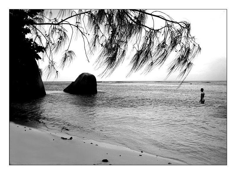 Seychelles, sous les filoas