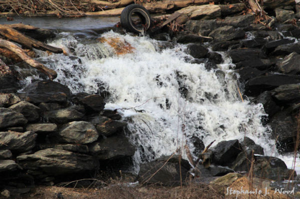 Mortonville Dam II #9