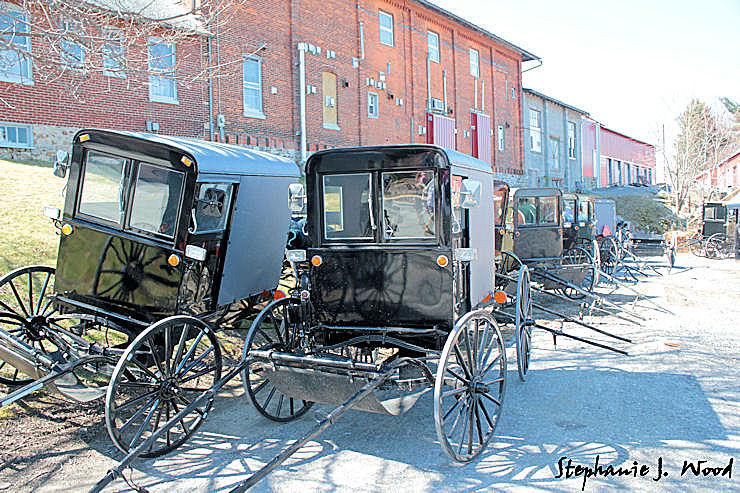 Mud Sale - Amish Buggy Parking