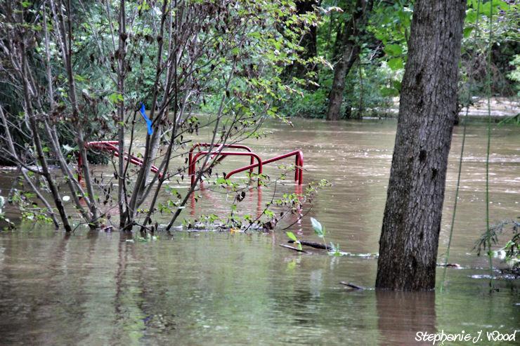 Hurrican Irene Flooding of Brandywine River 1/4