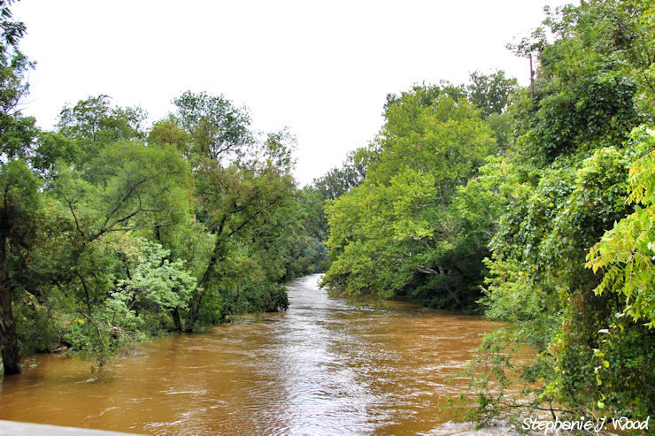 Hurricane Irene Flooding of Brandywine River 3/4
