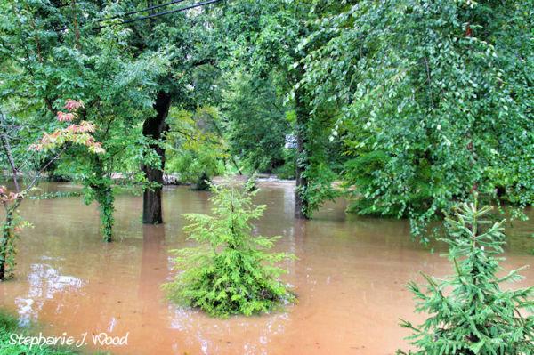 Flash Flood 9/7/11 (5/5)