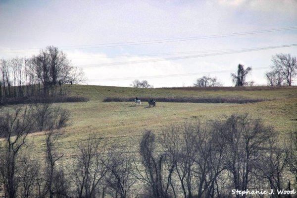 Fox Hunters on the Hill