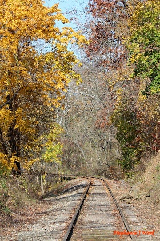 Fall in Newlin Township