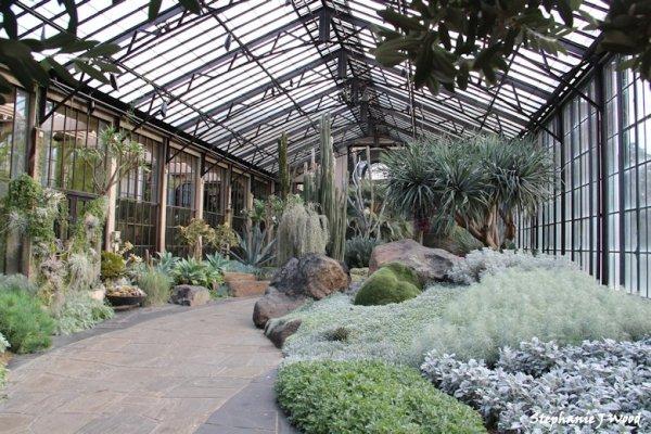 Cactus Room