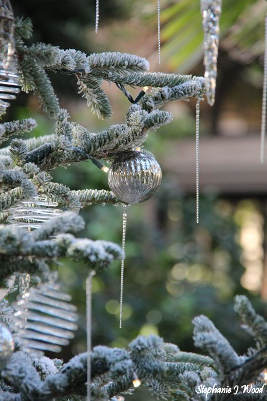 Christmas at Longwood Gardens by Day