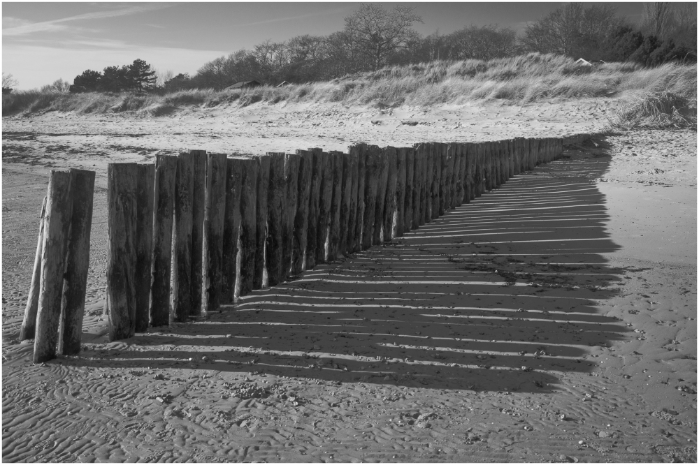 Beach Protection Poles