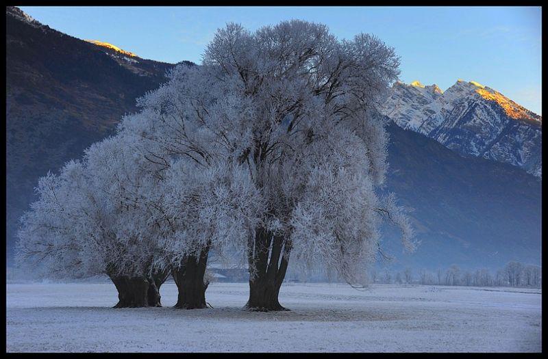 Agarn Valais Suisse