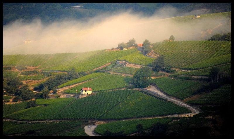 Salquenen Valais suisse