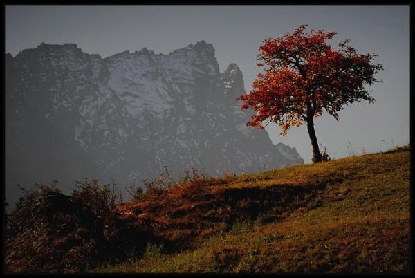 Tiefencastel Grisons Suisse