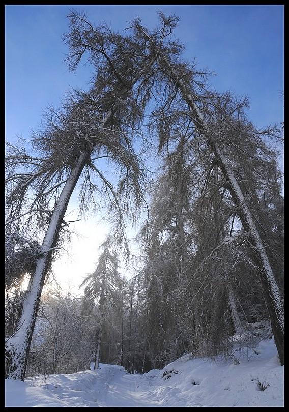 Vex Valais Suisse