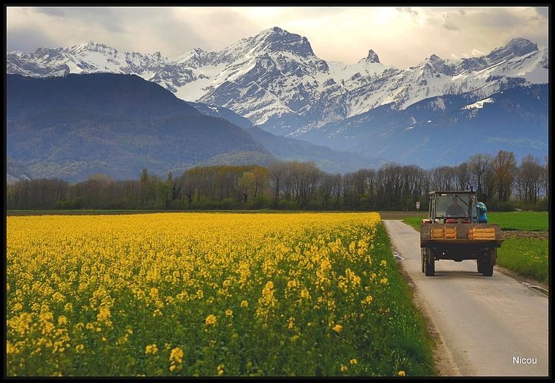 Vouvry Valais Suisse