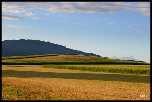 Forel Vaud Suisse