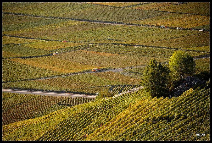 Chamoson Valais Suisse
