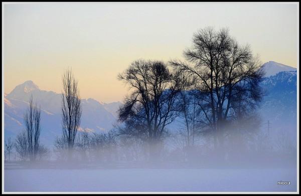 Ardn Valais Suisse