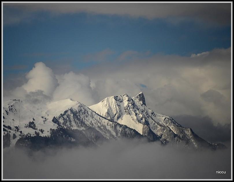 Mayen de My Valais Suisse