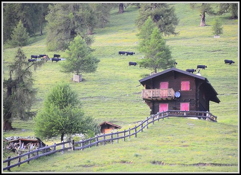 Pranrion Valais Suisse